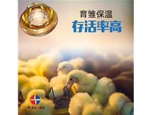养鸡场选用育雏保温灯有哪些好处?