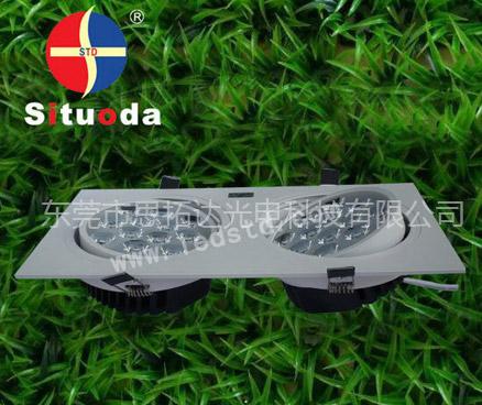 STD-TH-24W-C-06 LED白色双头天花灯