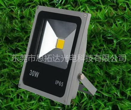 LED 投光灯 STD-TG-30W-C-09