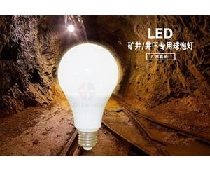 矿井/井下专用球泡灯