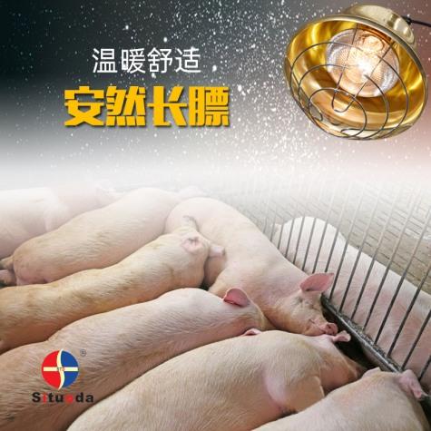畜牧养殖保温取暖灯