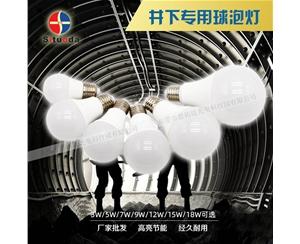 井下专用球泡灯-1