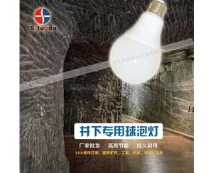 井下专用球泡灯-2
