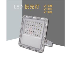 30W led星光款投光灯