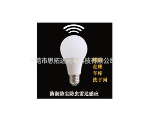 LED bulb1