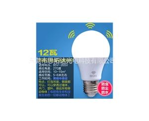 LED bulb3